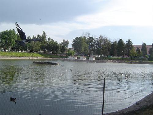 parque-sahuatoba